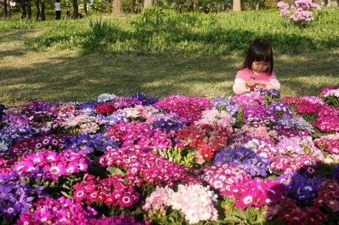 Como afecta la primavera a los niños