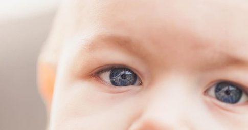 visión en los bebés
